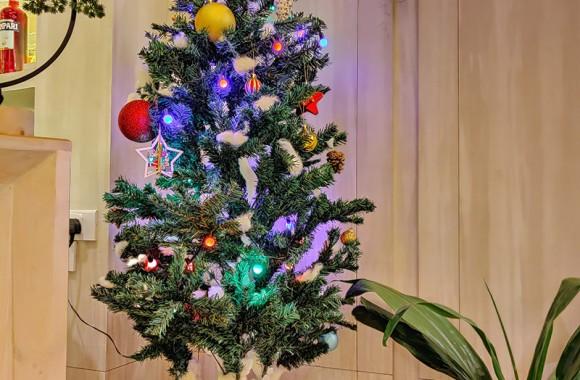 Christmas Tree at Arushi Lobby